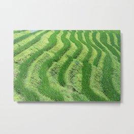 Longji Rice Terraces Metal Print