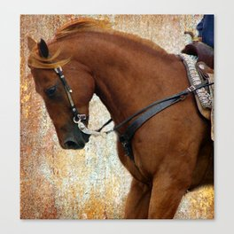 Western Riding Canvas Print