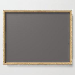 Cheap Solid Dark Ash Gray Color Serving Tray