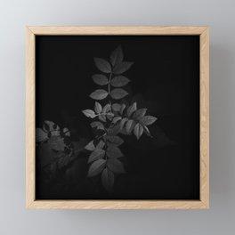 B&W growth Framed Mini Art Print