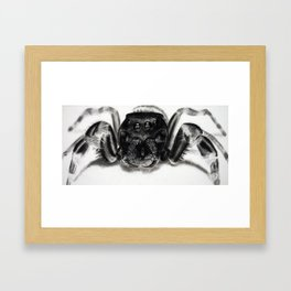 Arachnaphobia Framed Art Print