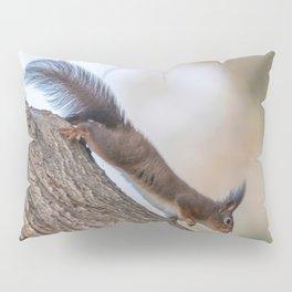 Red squirrel on tree trunk, Forest squirrel (Sciurus vulgaris) Pillow Sham
