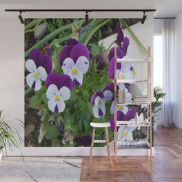 Purple pansy Wall Mural