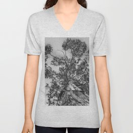 The old eucalyptus tree Unisex V-Neck