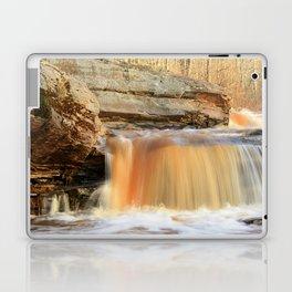 Bonanza Falls Laptop & iPad Skin
