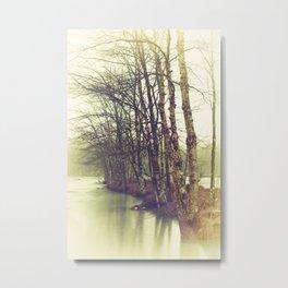 Natures Winter Slumber Metal Print