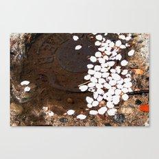 puddle petals Canvas Print