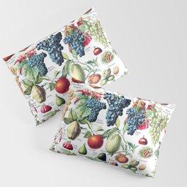 Adolphe Millot - Fruits pour tous - French vintage poster Pillow Sham
