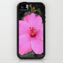 Hibiscus listens iPhone Case