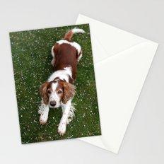 Welsh Springer Spaniel - Scott Stationery Cards