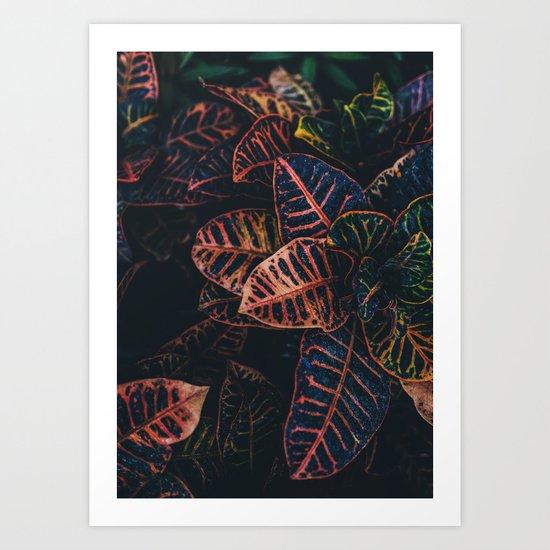 Dark Leaves - Nature Photography Art Print