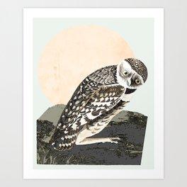 LargeHeaded Burrowing Owl Art Print
