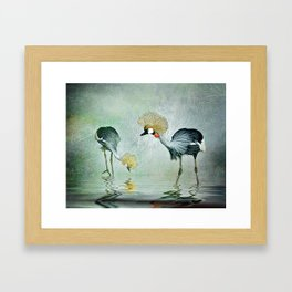 Cranes in the mist Framed Art Print