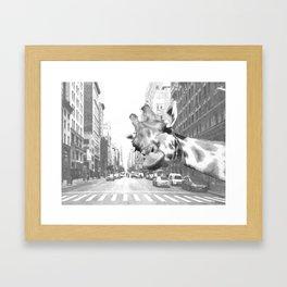 Black and White Selfie Giraffe in NYC Framed Art Print