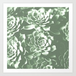 Modern sucullent green cactus floral pattern Art Print