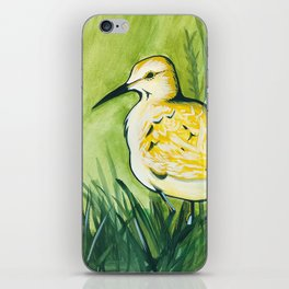 Pensive Bird iPhone Skin