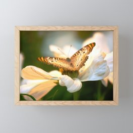 Butterfly Colllecting Nectar Framed Mini Art Print