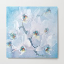 The mystery of orchid(snowy) Metal Print