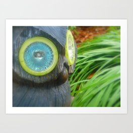 Owl Surveying Art Print