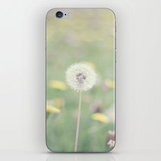 A thousand wishes iPhone & iPod Skin