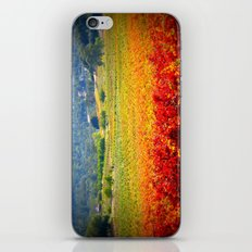 autumn vineyard iPhone & iPod Skin