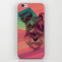 schnauzer iPhone & iPod Skins featuring Schnauzer by MOSAICOArteDigital