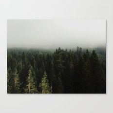 Stevens Pass Canvas Print