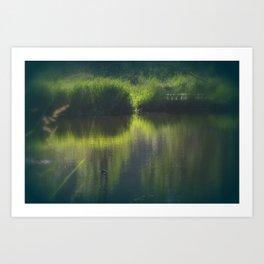 turtle swimming away at Trojan pond, near Goble, Oregon Art Print