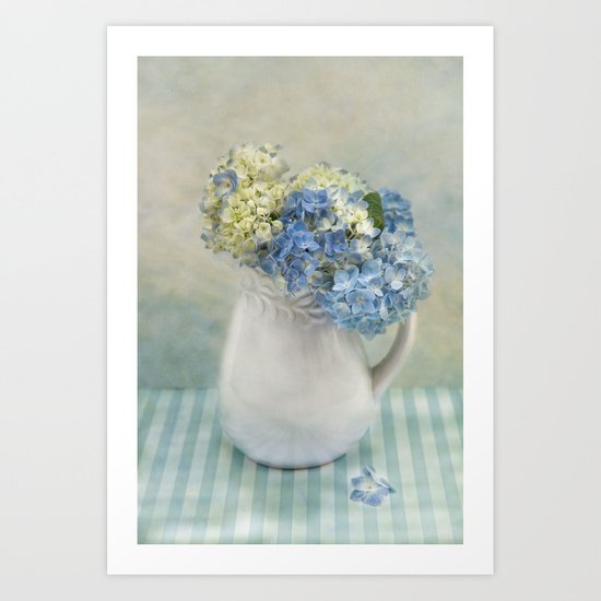 Hydrangea Morning Art Print