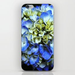 Hydrangea on Black iPhone Skin