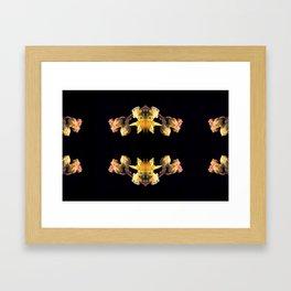 Echeveria inflorescence Framed Art Print