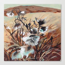 Brown Thistle Canvas Print