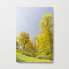 Greenery spring trees vibrant nature Metal Print