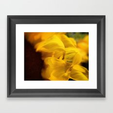 Sunflower Macro 2 Framed Art Print
