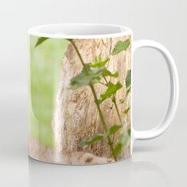 Lynx Lynx Coffee Mug