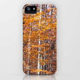 Golden brown leaves iPhone Case