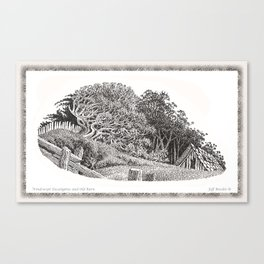 WINDSWEPT EUCALYPTUS TREE AND OLD BARN ON THE MENDOCINO COAST Canvas Print