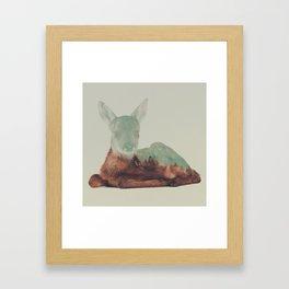 Resting Fawn Framed Art Print
