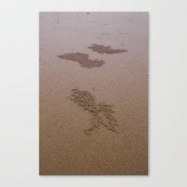 Sandart Canvas Print