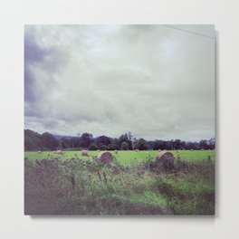Peaceful Hays Metal Print