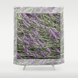 "LAVANDULA ""FRED BOUTIN"" Shower Curtain"
