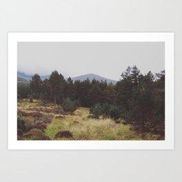 The singing meadow Art Print