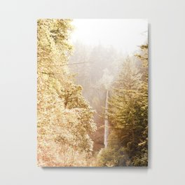 OREGON GORGE WATERFALL Metal Print