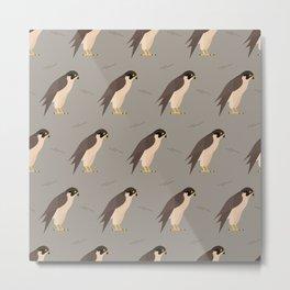 Falcons on grey Metal Print