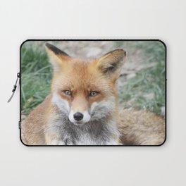 Fox_20141201_by_JAMFoto Laptop Sleeve