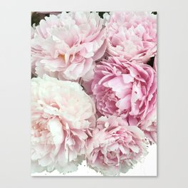 A bunch of peonies Canvas Print