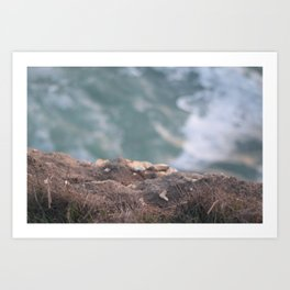 Over the Cliff Art Print
