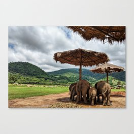 I like big butts Canvas Print