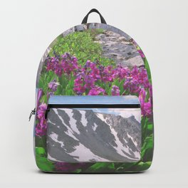 Above the tree line, in the tundra above Breckenridge, Colorado Backpack