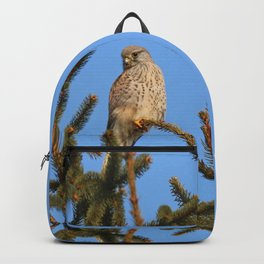 hawk sits on a tree and watching prey Backpack